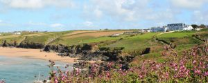 Crantock Bay 300x120 - Happy New Year from Crantock