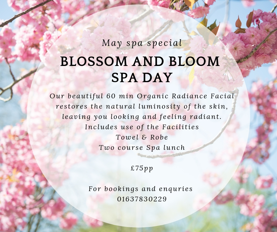 Blossom and bloom spa day 1 - May Special Offers