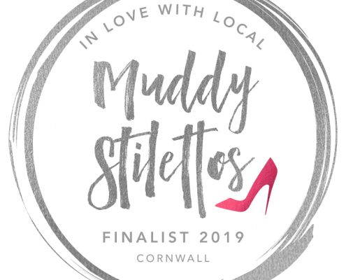 Muddy Stilettos Awards 2019 Cornwall Finalist 002 495x400 - Holiday Apartments